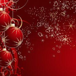 Offerte e Prodotti di Natale