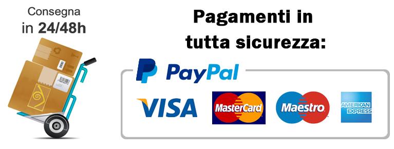 pagamenti in tutta sicurezza con paypal